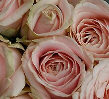 Vintage Pink Bouquet Of Roses by edesigns14