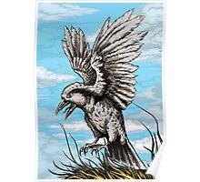 Bird Poster Poster