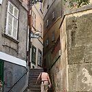 Stairs in an ally near Franz Josef Kai, Vienna by Ilan Cohen