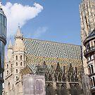 Saint Stephen's church, Vienna by Ilan Cohen