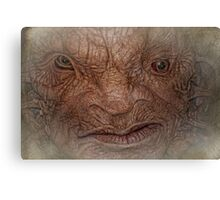 The Face of Boe  Canvas Print