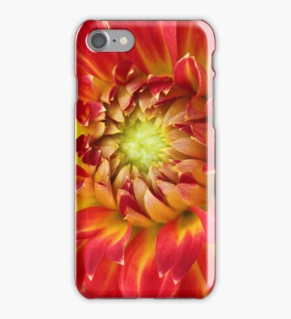 Salsa iPhone Case/Skin