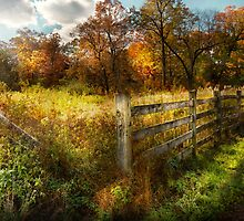 Country - Autumn years  by Mike  Savad