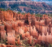 Bryce Canyon Utah Views 501 by Bo Insogna
