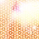 Flower of Life - Orange Glow by Steven Nicolaides
