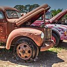 Rusty Relics by Pauline Tims