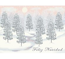 Snowy Day Winter Scene - Feliz Navidad Christmas Card Photographic Print