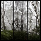 Forest - Triptych by Kitsmumma