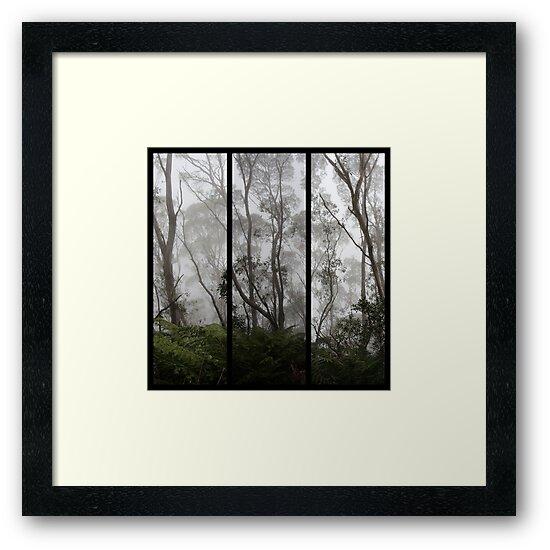 Forest - Triptych by Kitsmumma