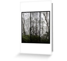Forest - Triptych Greeting Card