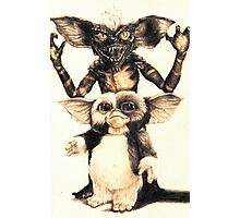 Gizmo and Spike from Gremlins Photographic Print