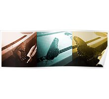 Butterfly Triptych Poster