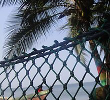 Hammock on Beach by TravelGrl