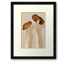 Plant - Mushrooms - I'm so proud of my daughter Framed Print