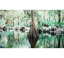 Reflection Pond Photographic Print