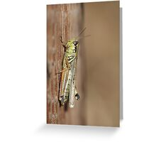 Stealth hopper Greeting Card