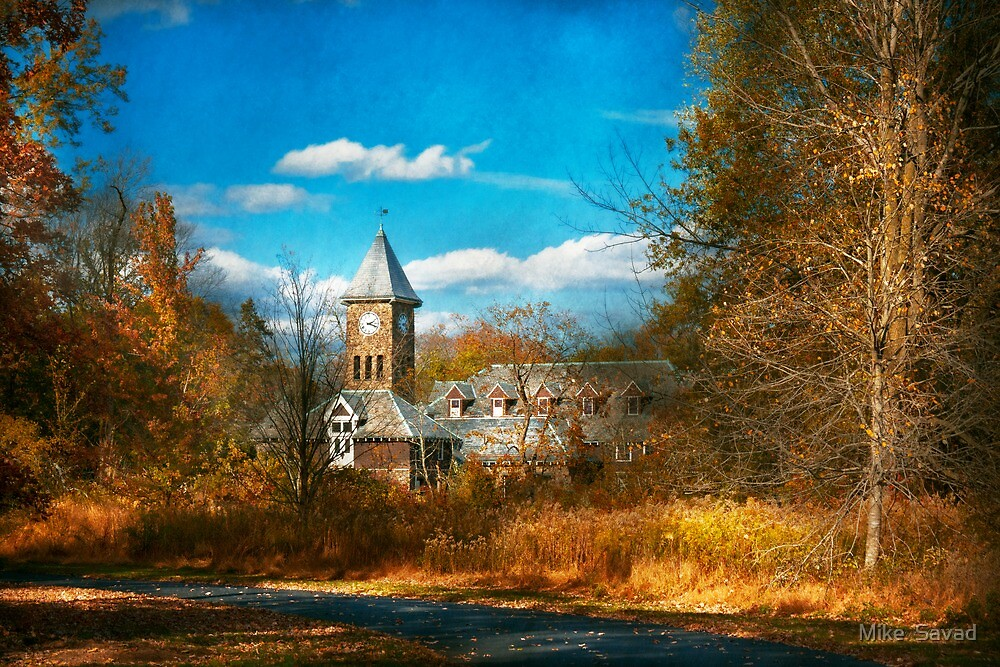 Architecture - The university by Mike  Savad