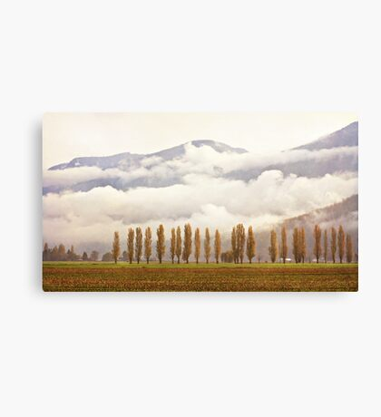 Moody Morning (Colour with Texture) Canvas Print