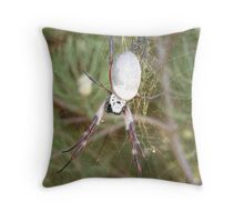 orb weaver 1 Throw Pillow