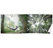Hammock Camping Poster