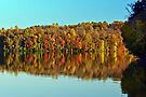 Autumn Lake by cclaude