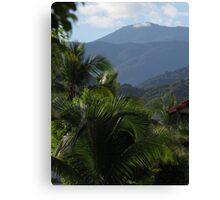 tropical landscape - paisaje tropical Canvas Print