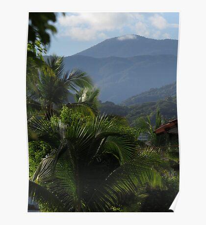 tropical landscape - paisaje tropical Poster