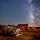 Bodie Nights by Cat Connor