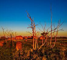 Sticks and Stones by Matt Mason