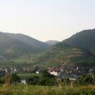 Small village near the Danube, Wachau Austria by Ilan Cohen