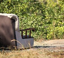lounge chair                         by mrivserg