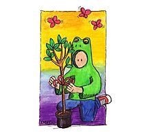 KMAY Hoodkid Frog with Tree Gift Photographic Print