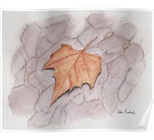 Golden Brown Autumn Leaf on Lilac Pavement  Poster