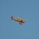 Warbirds Downunder 2013, Tiger Moth by bazcelt