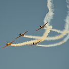 Warbirds Downunder 2013, Harvards by bazcelt