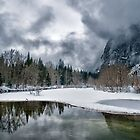 Winter along the Merced by Cat Connor