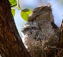 Go To Sleep Son by byronbackyard