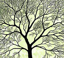 BIG OLD TREE by RainbowArt