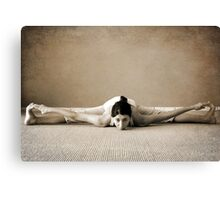 yoga1 Canvas Print