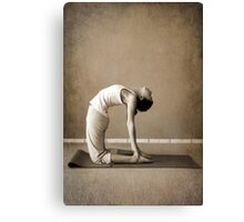 yoga3 Canvas Print