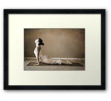 yoga13 Framed Print