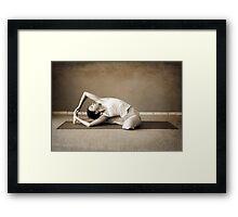 yoga12 Framed Print