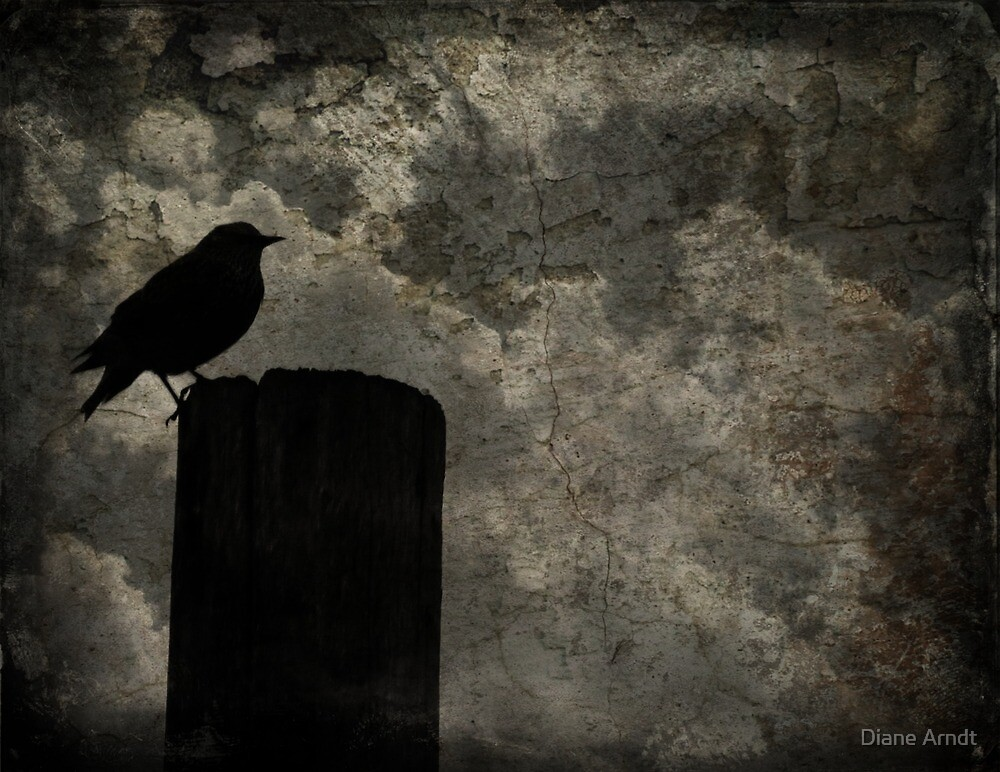 Dwelling On Poe...When I Grow Up I'm Going To Be A Raven by Diane Arndt