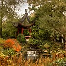 Chinese garden in autumn by TheaDaams