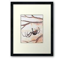 Black Widow Spider Watercolor Framed Print