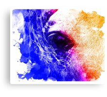 Abstract water color horse Canvas Print