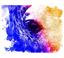 Abstract water color horse Photographic Print