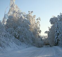 Road and Snowy trees by KalleCat