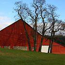 Red Barn - Fall Evening Waynesville Ohio by Tony Wilder