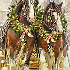 Christmas Clydesdales by Trudi's Images